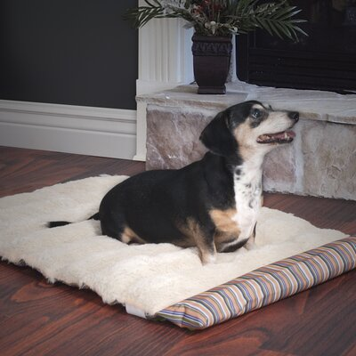 Roll-Up Portable Dog Bed Color: Coral