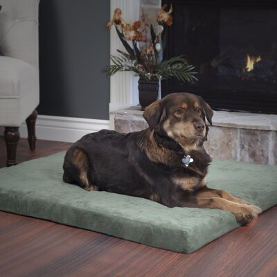 Orthopedic Super Foam Dog Pillow Size: Medium (25.5 W x 19 D x 3.5 H), Color: Forest