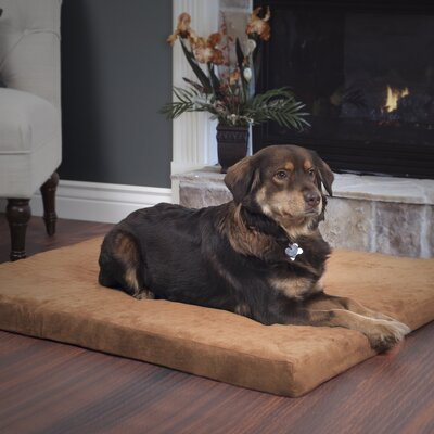 Orthopedic Super Foam Dog Pillow Size: Large (36 W x 27 D x 3.5 H), Color: Clay