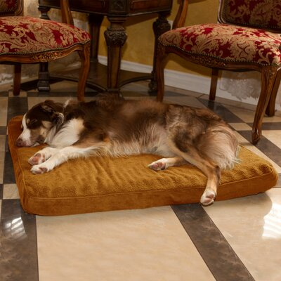 Orthopedic Super Foam Dog Pillow Size: Large (36 W x 27 D x 3.5 H), Color: Camel
