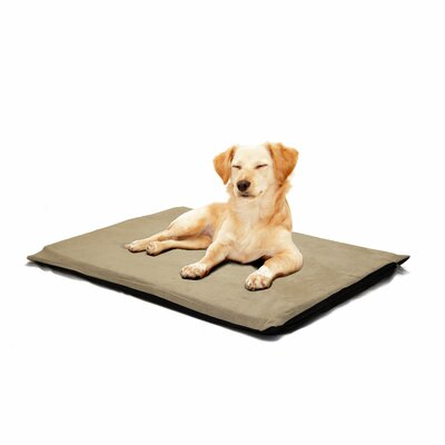 Orthopedic Foam Dog Mat Color: Clay, Size: Large (32 L x 24 W)