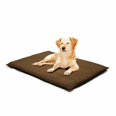 Orthopedic Foam Dog Mat Color: Espresso, Size: Jumbo( 41 L x 31 W)