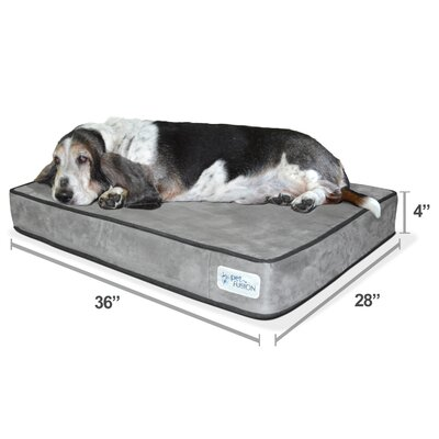 Serenity Lounge Dog Bed- Solid 4 Memory Foam