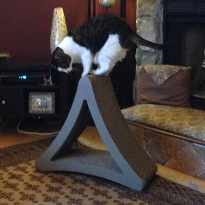 3 Sided Vertical Cat Scratcher Size: Large