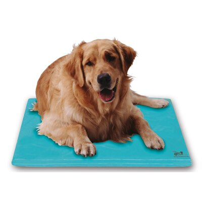 Canine Cooler Dog Mat Size: Small (24 L x 18 W)