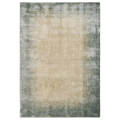 Maya Aurora Vapor Area Rug Rug Size: Rectangle 53 x 75