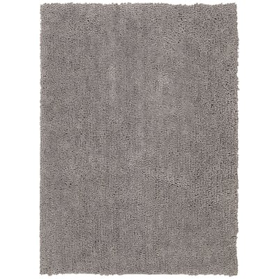 Puli Hand-Woven Loc Ashen Area Rug Rug Size: Rectangle 5 x 7