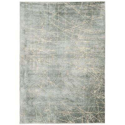Maya Etched Light Mercury Area Rug Rug Size: 53 x 75