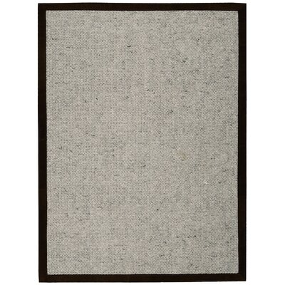 Lucia Ashen Area Rug Rug Size: Rectangle 9 x 12