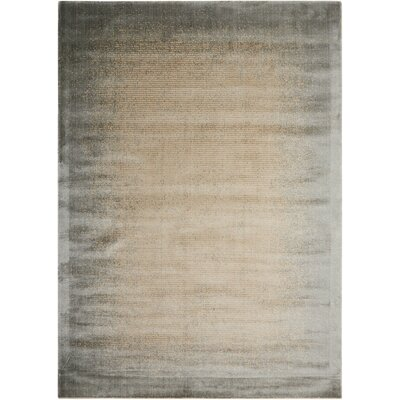 Maya Aurora Vapor Area Rug Rug Size: Rectangle 76 x 106