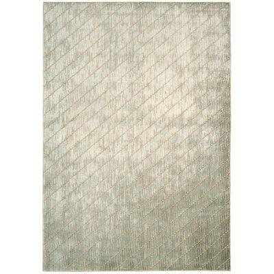 Maya Feldspar Mica Area Rug Rug Size: 35 x 55