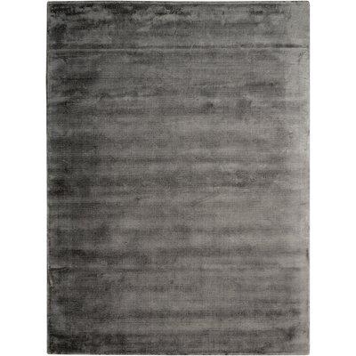 Lunar Hand-Woven Luminescent Rib Onyx Area Rug Rug Size: Rectangle 36 x 56