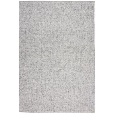 Tobiano Hand-Loomed Silver Area Rug Rug Size: Rectangle 53 x 75