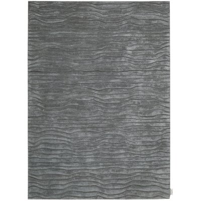 Canyon Hand-Woven Gray Area Rug Rug Size: Rectangle 79 x 1010