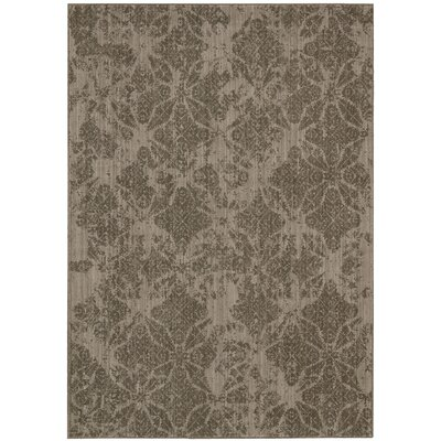 Urban Punjab Vetiver Area Rug Rug Size: Rectangle 79 x 1010