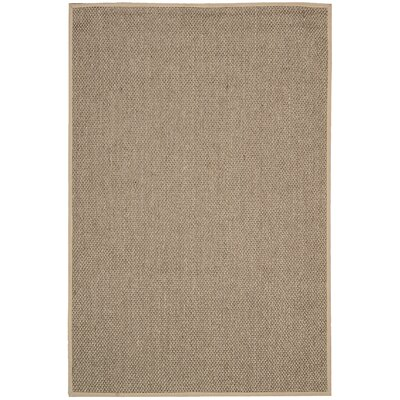 Kerala Java Taupe Area Rug Rug Size: Rectangle 26 x 42