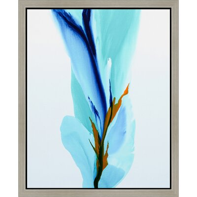 """'Springs Calling Card' Framed Painting Print on Canvas Size: 14"""" H x 11"""" W x 1.5"""" D SICC1110aC"""