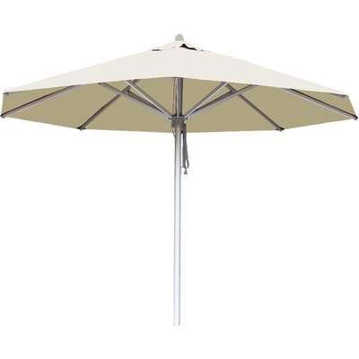 10 Hurricane Market Umbrella Fabric: Ecru