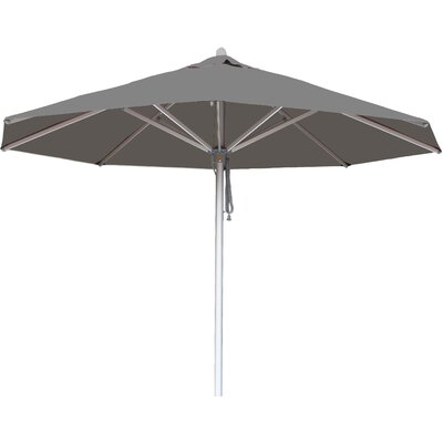 10 Hurricane Market Umbrella Fabric: Taupe