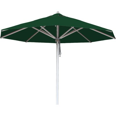 10 Hurricane Market Umbrella Fabric: Forest Green