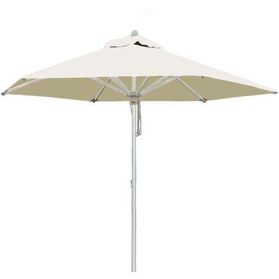 8.5 Santa Ana Market Umbrella Fabric: Ecru