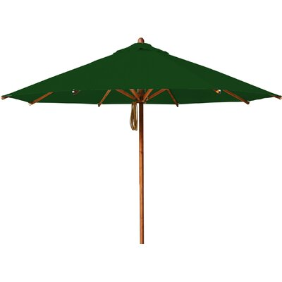 11.5 Levante Market Umbrella Fabric: Forest Green
