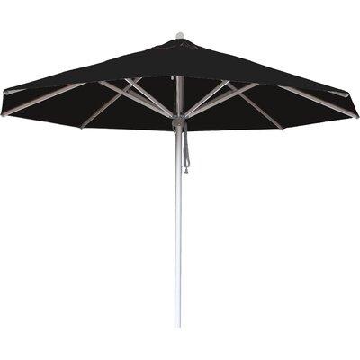10 Hurricane Market Umbrella Fabric: Black