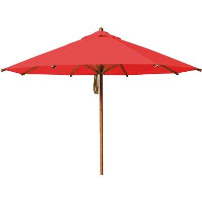 Bambrella Levante 11.5' Market Umbrella Fabric: Red
