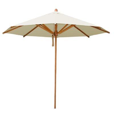 8.5 Levante Market Umbrella Fabric: Ecru