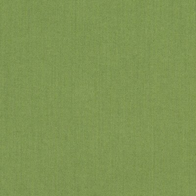 Alexandria Swing Canopy Fabric Spectrum Cilantro picture