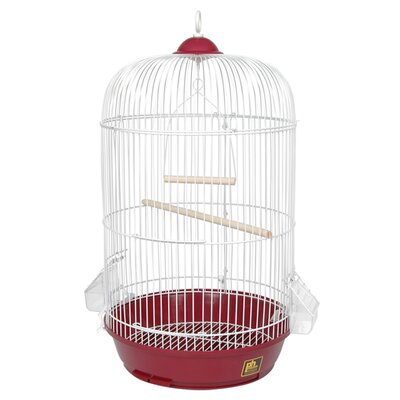 Classic Round Bird Cage Color: Red
