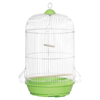 Classic Round Bird Cage Color: Green