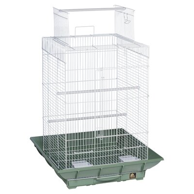 Clean Life PlayTop Bird Cage Color: Green / White
