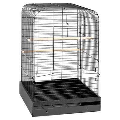 Madison  Bird Cage Color: Black Hammertone