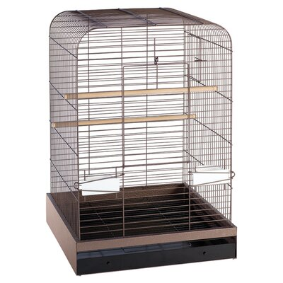 Madison  Bird Cage Color: Copper