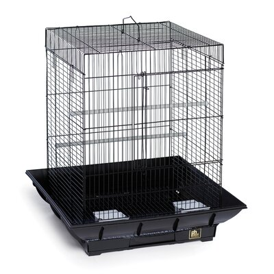 Clean Life Cockatiel Bird Cage Color: Black
