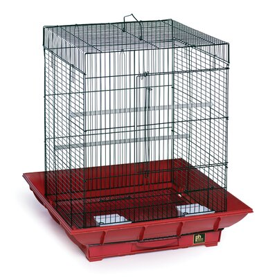 Clean Life Cockatiel Bird Cage Color: Red / Black