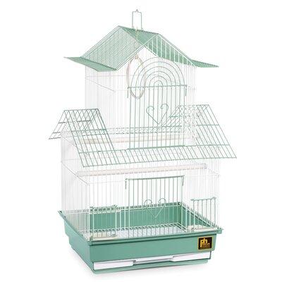 Shanghai Parakeet Bird Cage Color: Green / White