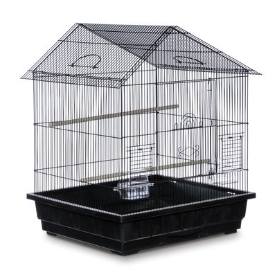 Offset Roof Cockatiel  Bird Cage Color: Black