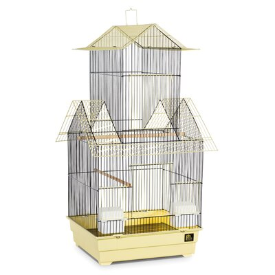 Beijing Bird Cage Color: Yellow and Black