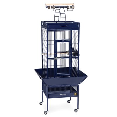 Signature Series Small Bird Cage Color: Cobalt Blue