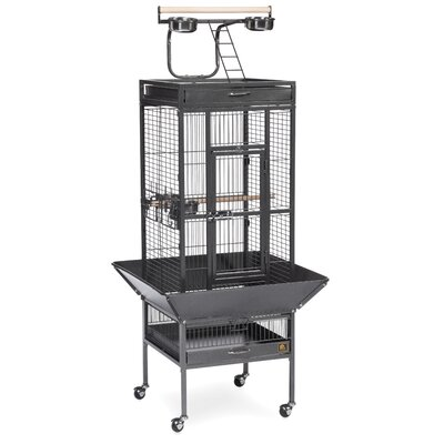 Signature Series Small Bird Cage Color: Black