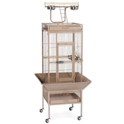 Signature Series Small Bird Cage Color: Coco