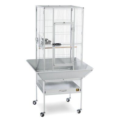 Park Plaza Bird Cage Color: Pewter