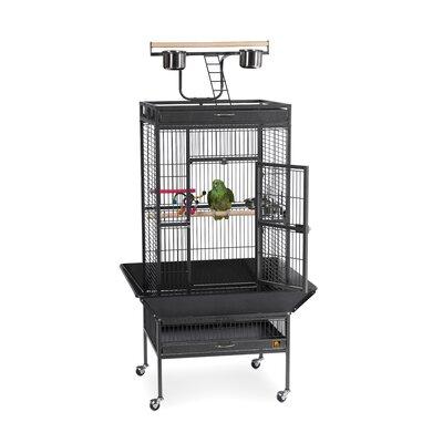 Signature Series Select Medium Bird Cage Color: Black