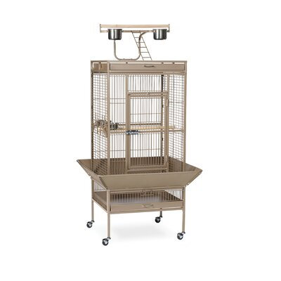 Signature Series Medium Bird Cage Color: Coco