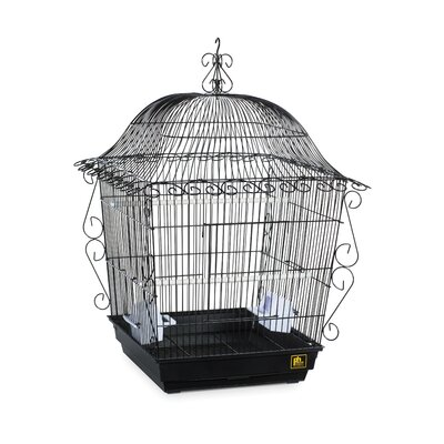 Jumbo Tiel Scrollwork Bird Cage Color: Black