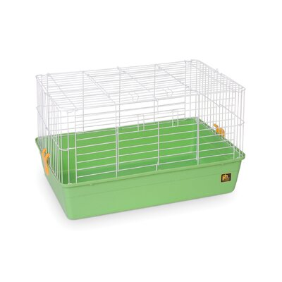Deep Tub Small Animal Cage Size: 16 H x 28 W x 17 D, Color: Green