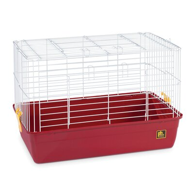 Deep Tub Small Animal Cage Size: 16 H x 24 W x 14 D, Color: Red
