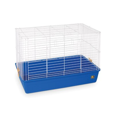 Deep Tub Small Animal Cage Color: Blue, Size: 17 H x 32 W x 20 D